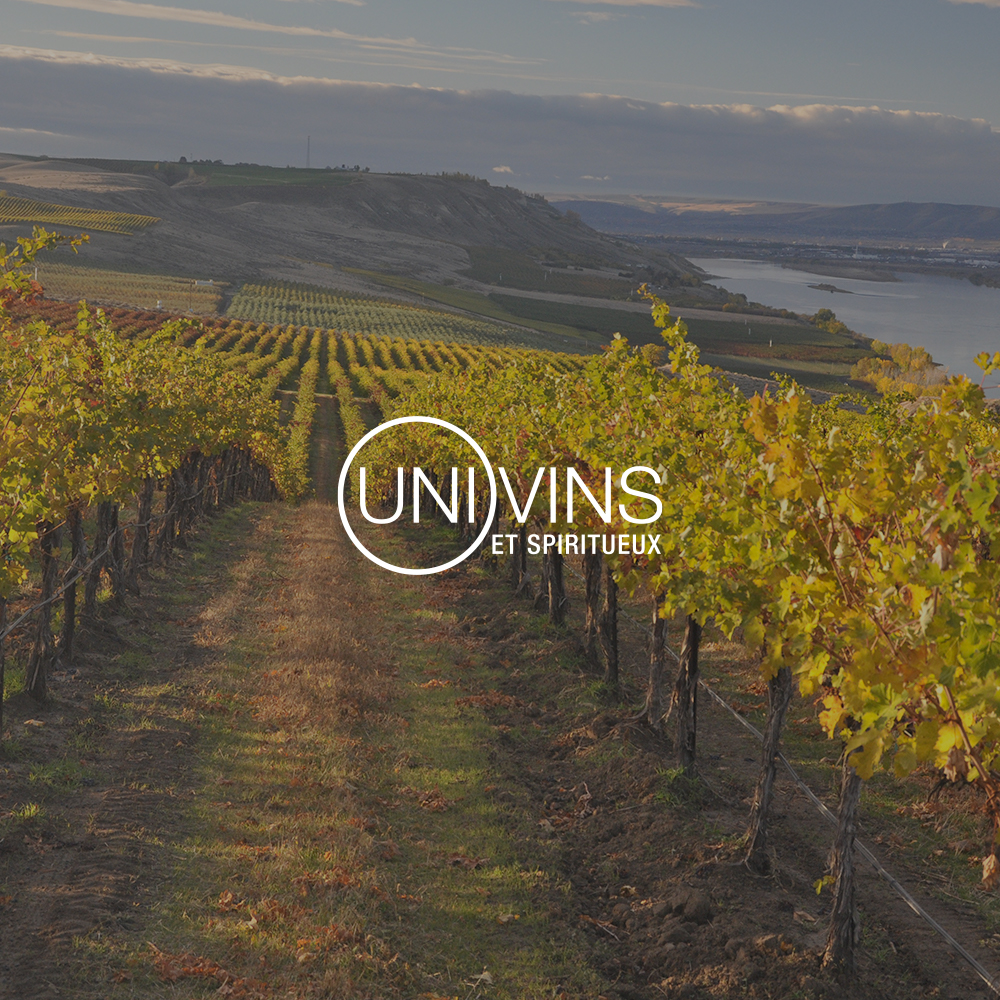 Univins and Spirits chooses Macadam to design its new web platform